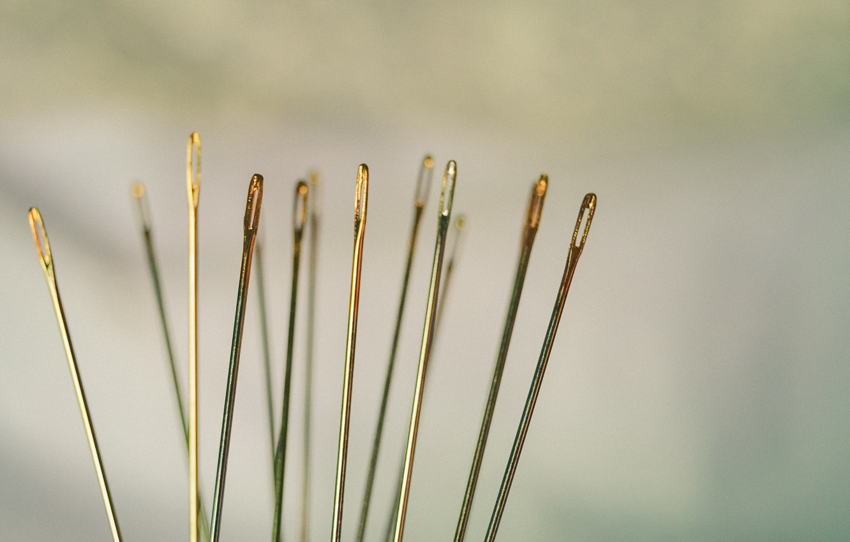 Photo wallpaper macro, needles, background