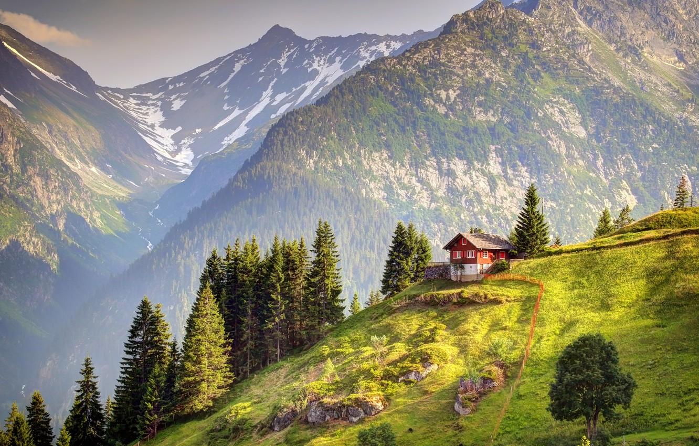 Photo wallpaper Switzerland, mountain, Alps