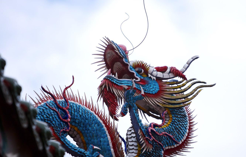 Photo wallpaper Dragon, China, Color
