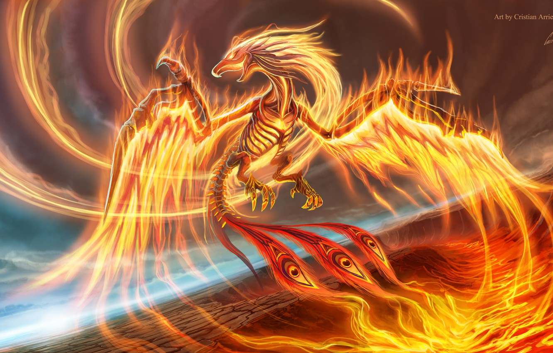Photo wallpaper flight, bird, wings, beak, tail, Phoenix, phoenix