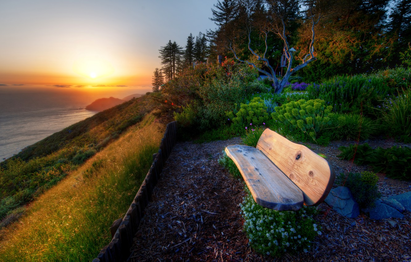 Photo wallpaper sea, greens, the sky, water, the sun, trees, landscape, sunset, flowers, bench, nature, river, background, …