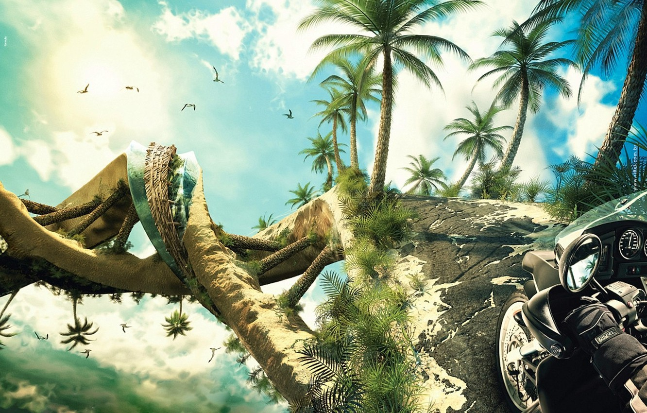 Photo wallpaper palm trees, spiral, Motorcycle