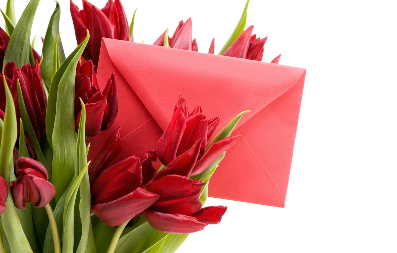 Photo wallpaper letter, romance, spring, tulips, red, March 8, beautiful, Spring, the envelope, lovely, bouquet, Tulips
