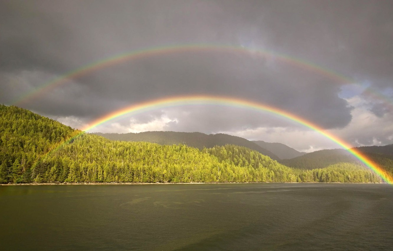 Photo wallpaper forest, clouds, rainbow, pond
