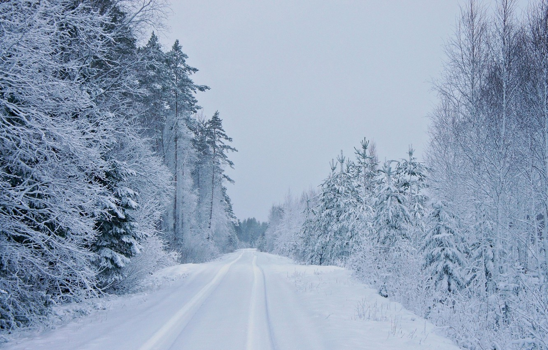 Photo wallpaper winter, road, trees