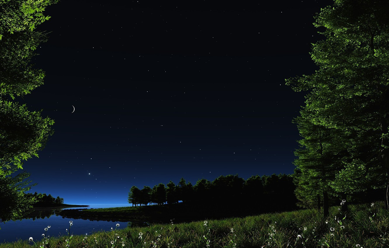 Photo wallpaper greens, the sky, grass, water, stars, landscape, flowers, night, nature, lake, pond, river, the moon, …