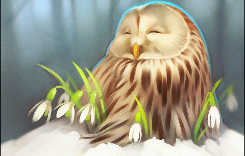 Photo wallpaper winter, snow, flowers, owl, art, snowdrop, owlet