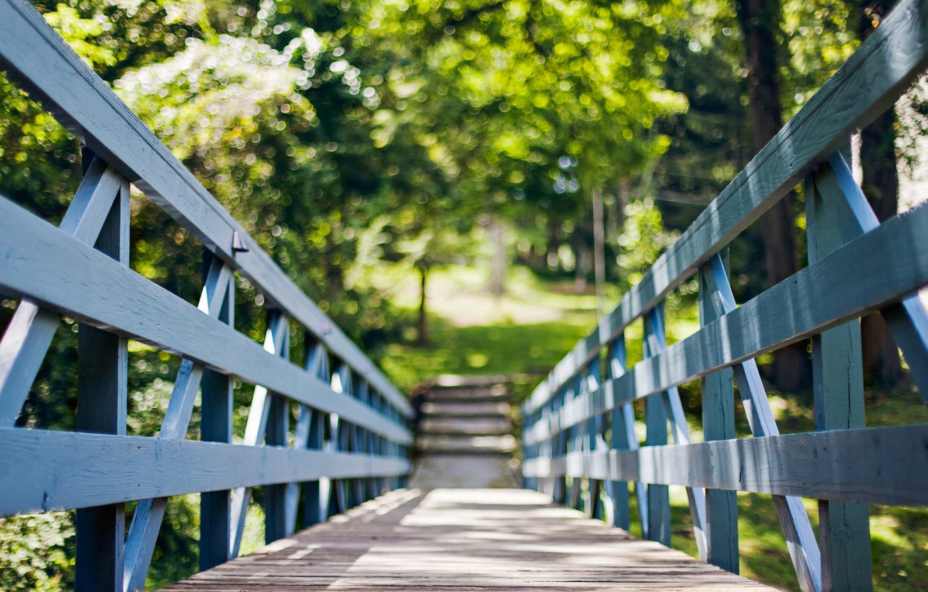 Photo wallpaper summer, the sun, trees, bridge, nature, tree, widescreen, Wallpaper, foliage, fence, the fence, day, wallpaper, …