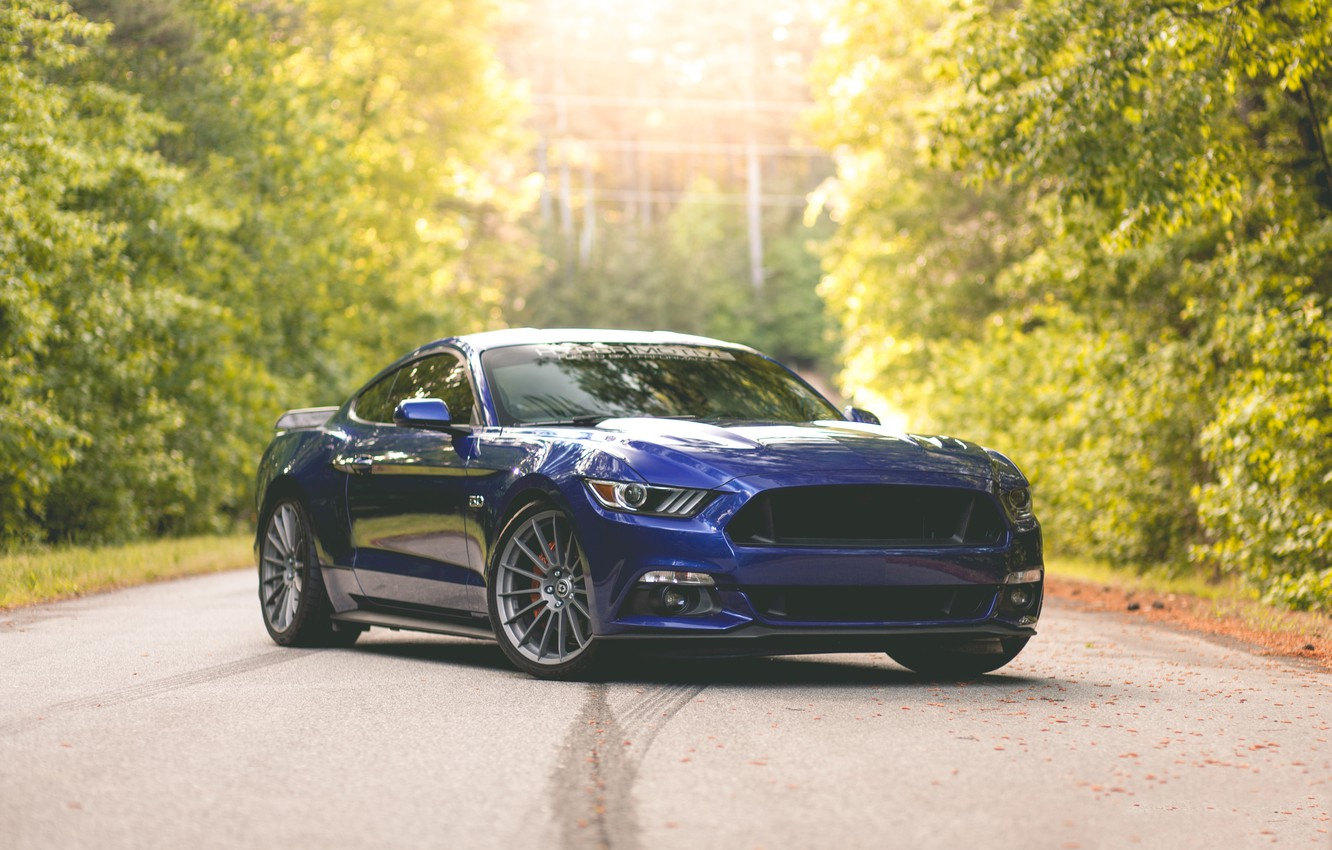 Photo wallpaper Mustang, Ford, Blue, 5.0, 2015