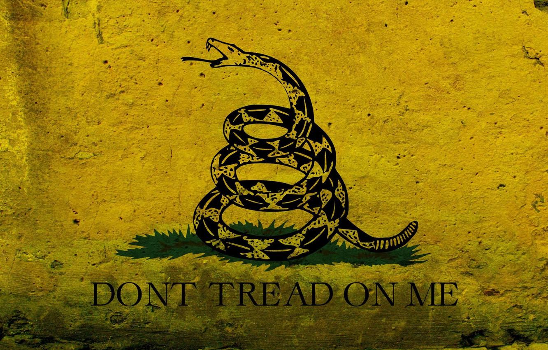 Photo wallpaper figure, graphics, snake, flag