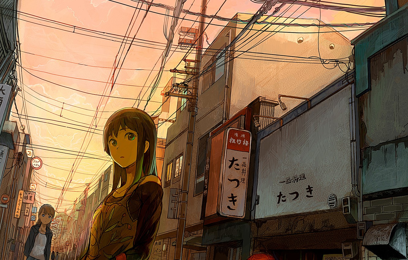 Photo wallpaper look, the city, street, wire, Japan