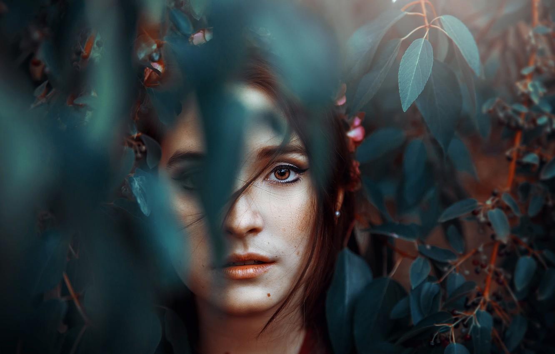 Photo wallpaper leaves, portrait, mole, Ronny Garcia