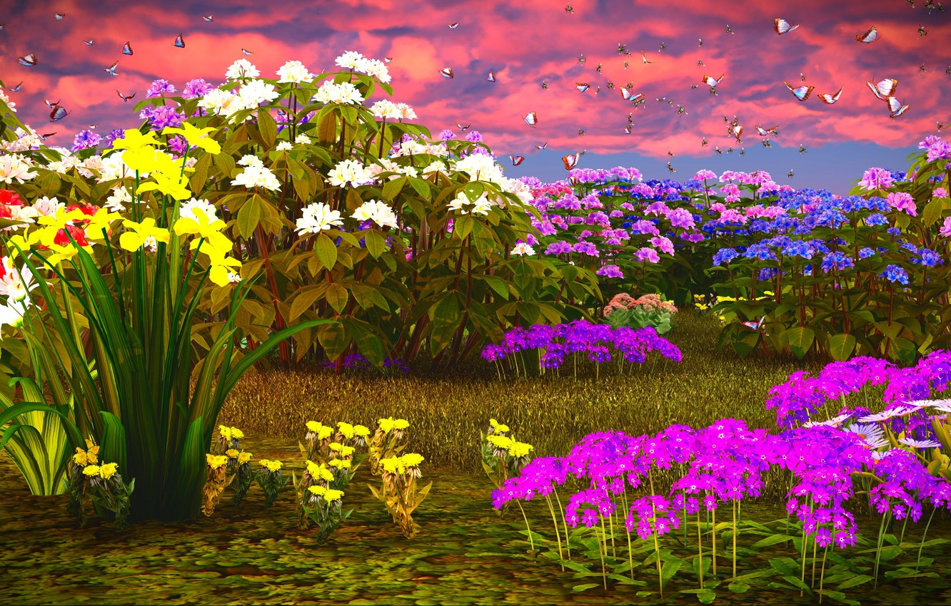 Photo wallpaper the sky, grass, clouds, butterfly, flowers, daffodils, Phlox