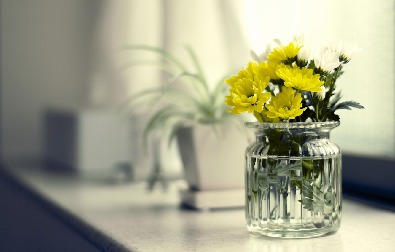 Photo wallpaper flowers, background, Bank