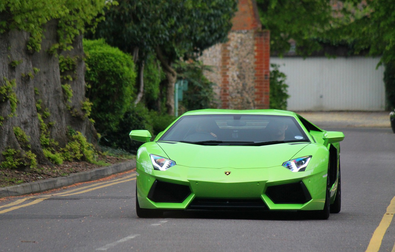 Photo wallpaper road, trees, markup, green, lamborghini, front view, aventador, Lamborghini, aventador, the curb, lp-700-4