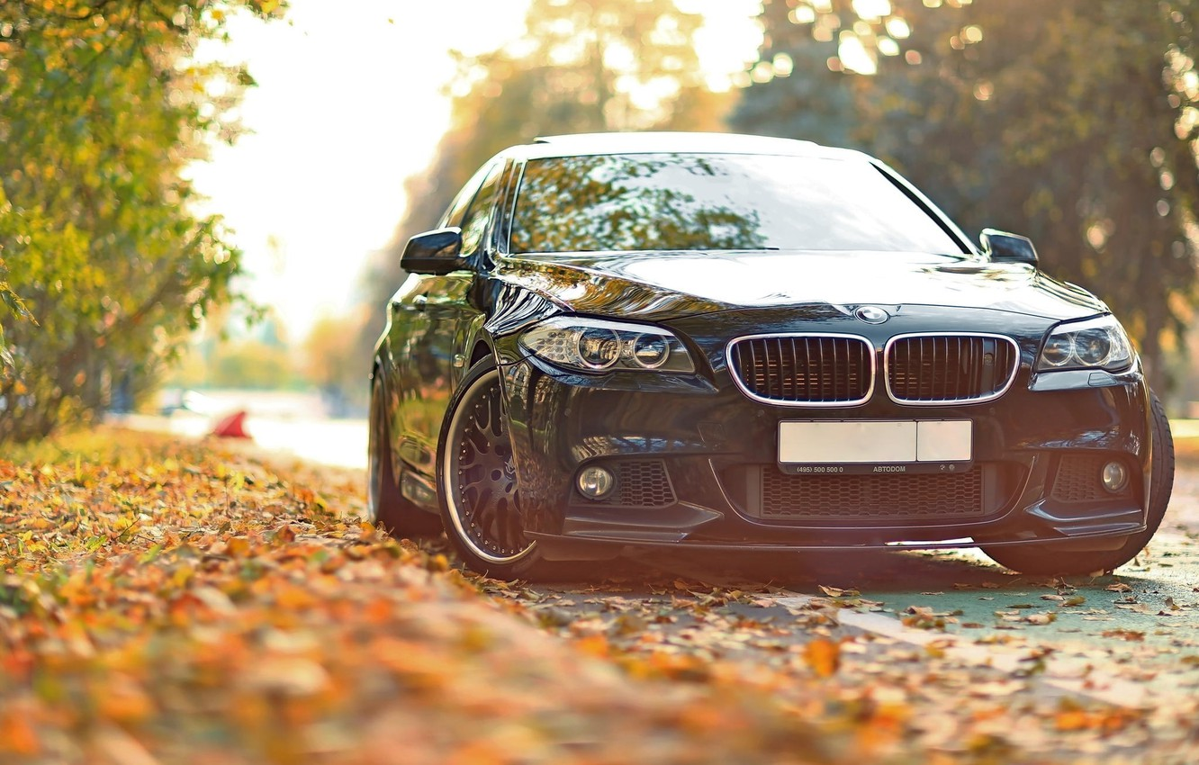 Photo wallpaper autumn, leaves, tuning, BMW, BMW, F10, 550, Drive
