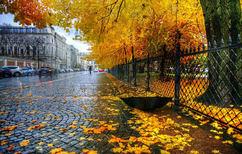 Photo wallpaper autumn, leaves, rain, the fence, umbrella, St. Petersburg, Catherine Park
