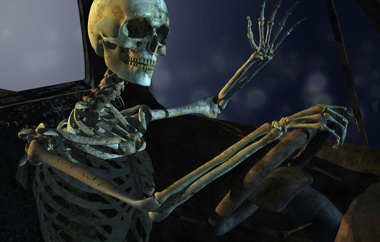 Photo wallpaper sake, pose, bones, sitting
