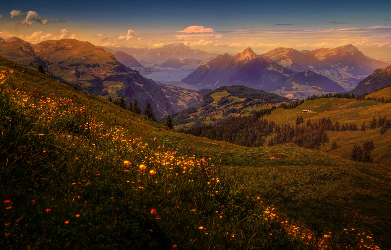 Photo wallpaper grass, trees, flowers, mountains, lake, dawn, field, treatment, Switzerland, slope, houses, forest, meadows
