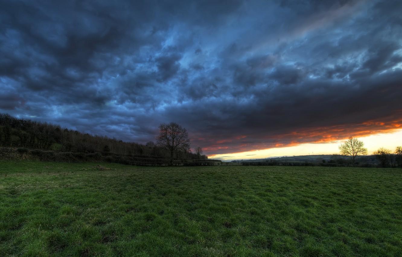 Photo wallpaper field, the sky, landscape, sunset