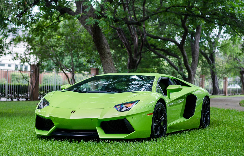 Photo wallpaper Lamborghini, Green, LP700-4, Aventador