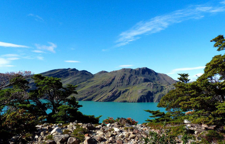 Photo wallpaper mountains, lake, stones, the bushes, Argentina, Patagonia