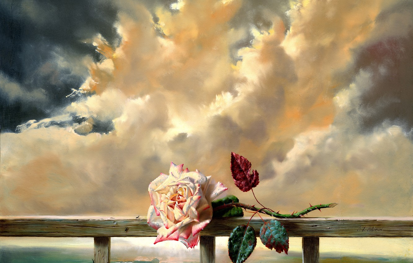 Photo wallpaper flower, clouds, freshness, rose, painting