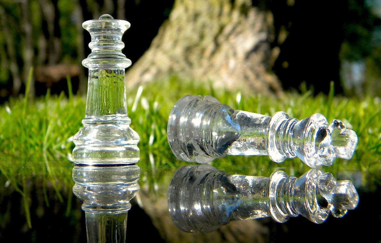 Photo wallpaper grass, glass, water, macro, nature, reflection, the game, chess, Queen, macro, chess, king, strategy, the …