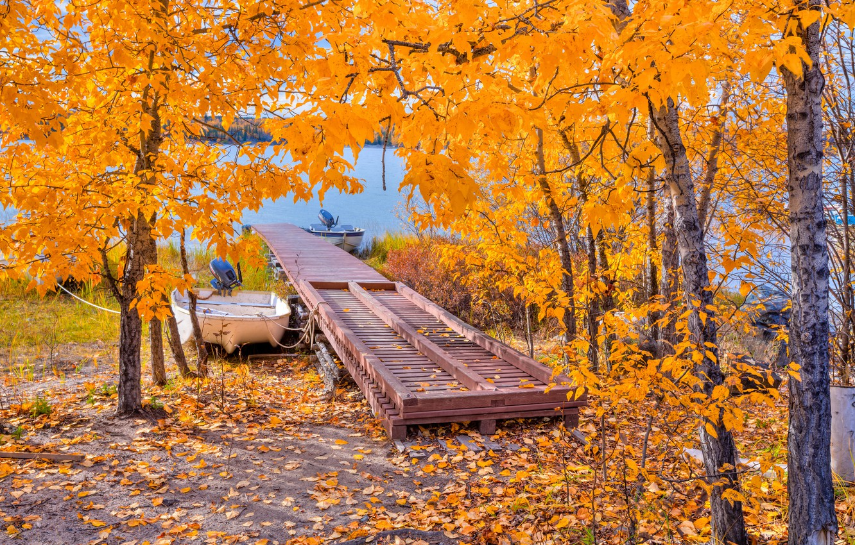 Photo wallpaper autumn, leaves, trees, lake, boat, the bridge