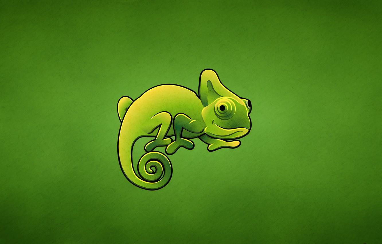 Photo wallpaper green, chameleon, lizard, chameleon
