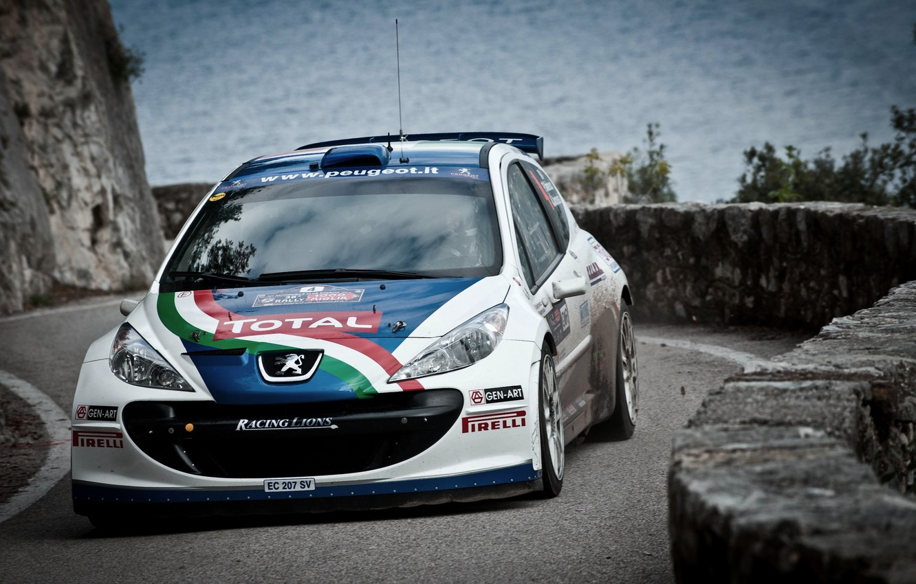 Photo wallpaper The hood, Peugeot, WRC, Rally, Rally, The front, 207