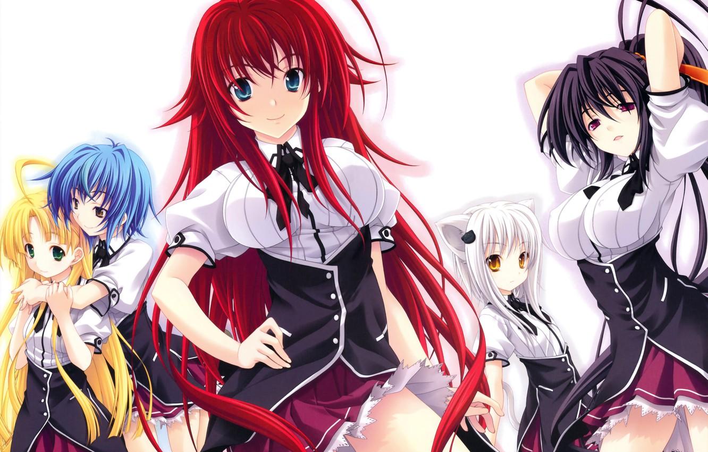 Photo wallpaper look, smile, anime, tail, school uniform, ears, anime, always koneko, asia argento, himejima ake'no, highschool …