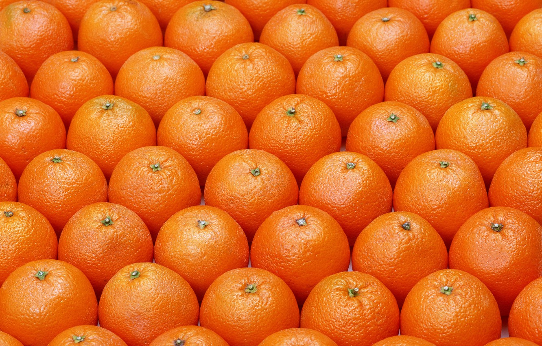 Photo wallpaper pattern, fruits, oranges, ordered