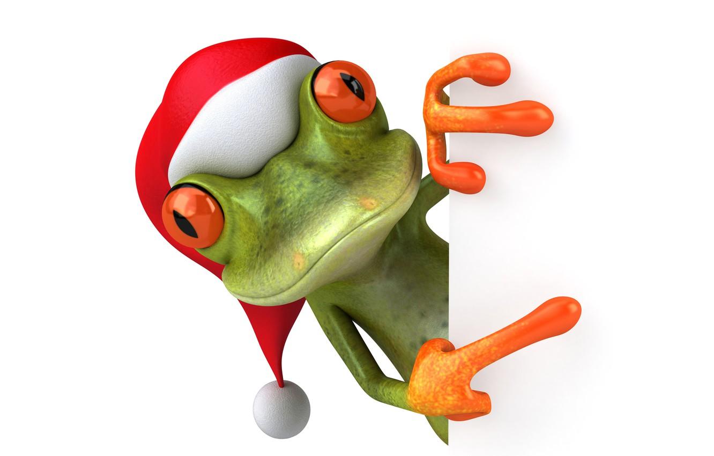 Photo wallpaper frog, christmas, frog, funny, santa hat