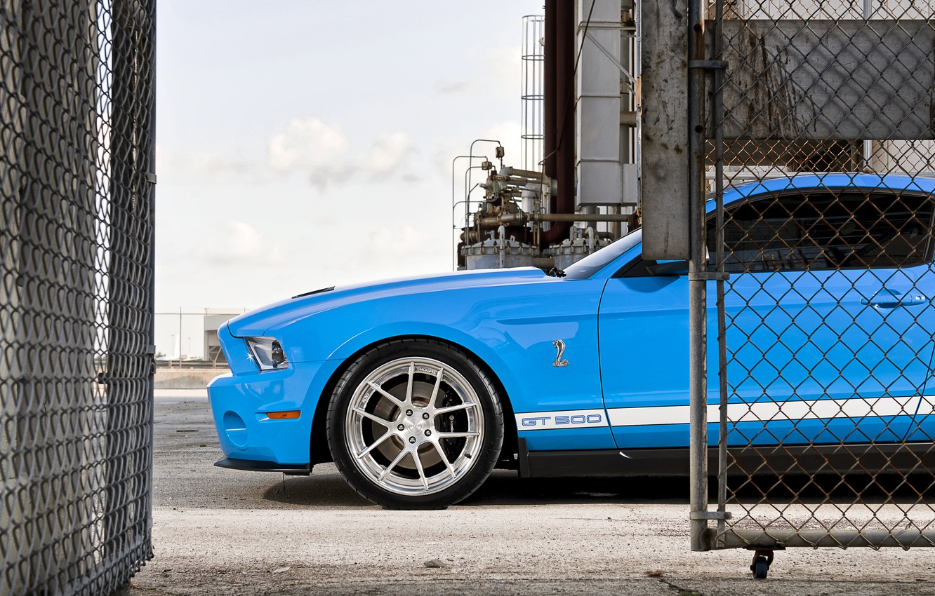 Photo wallpaper mesh, blue, the fence, Mustang, Ford, Shelby, GT500, Mustang, muscle car, Ford, Shelby, blue, racing …