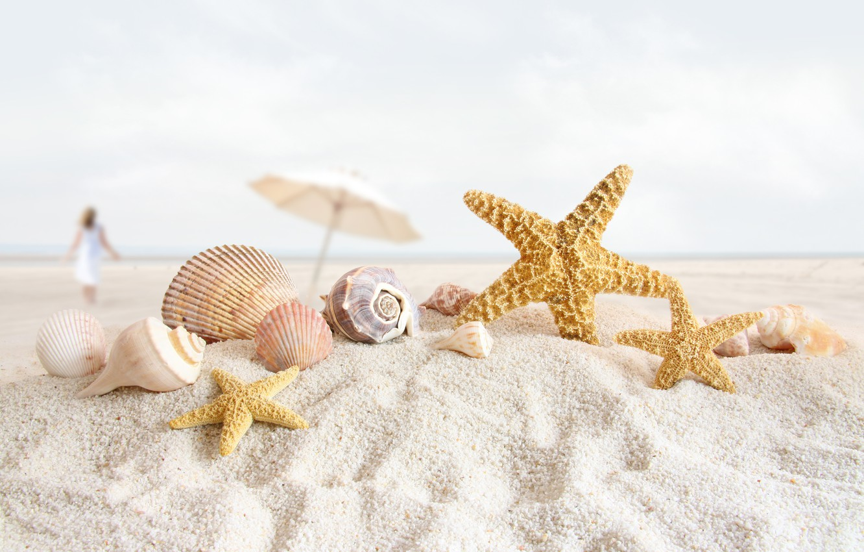 Photo wallpaper sand, beach, shell, starfish, shell