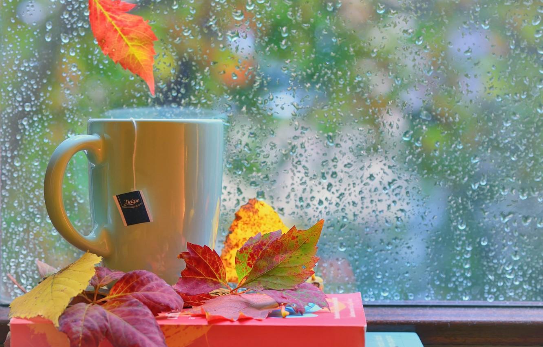 Photo wallpaper autumn, leaves, drops, rain, books, window, Cup, still life