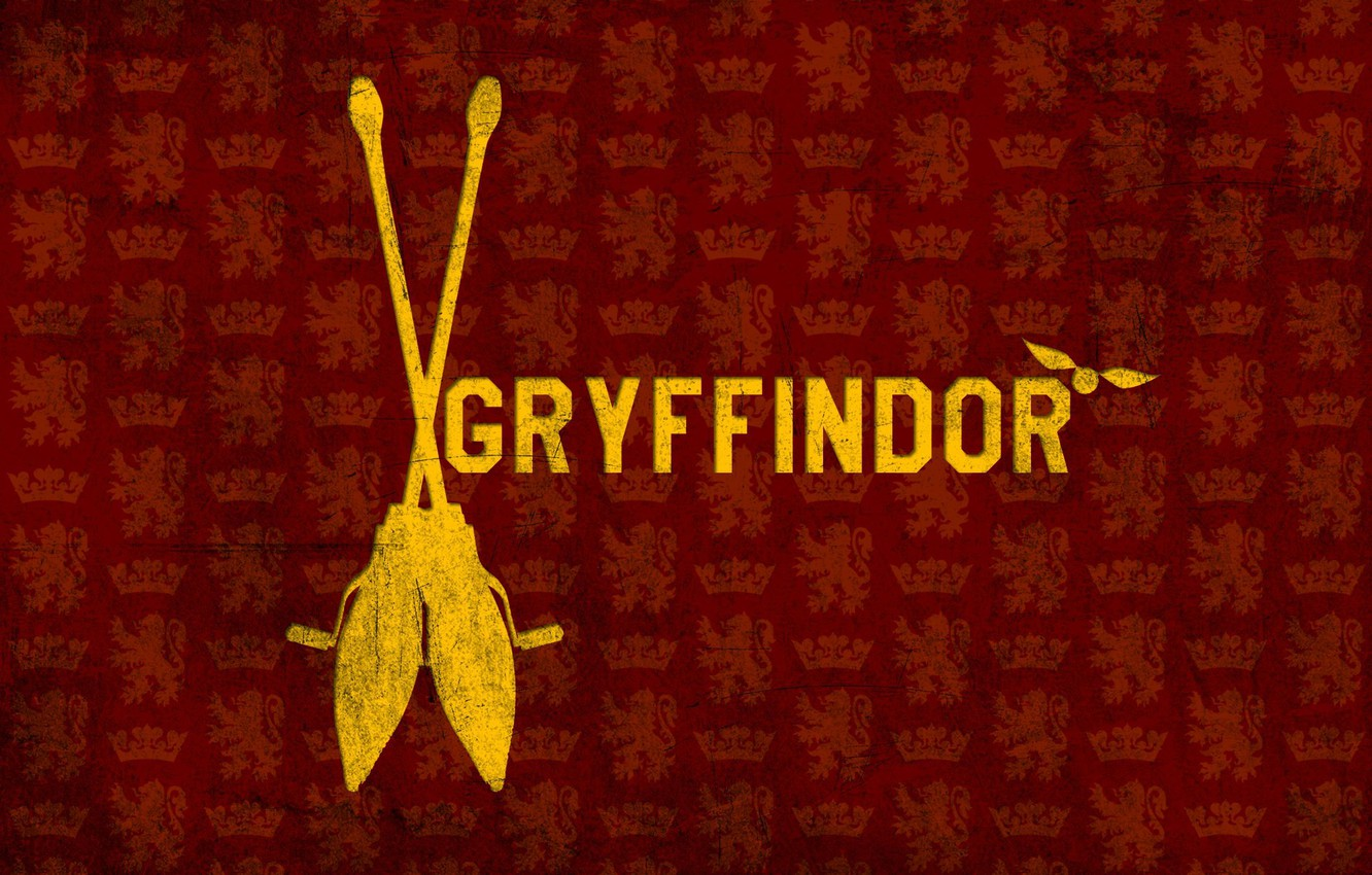 Photo wallpaper Harry Potter, broom, Harry Potter, Gryffindor, Gryffindor, Snitch
