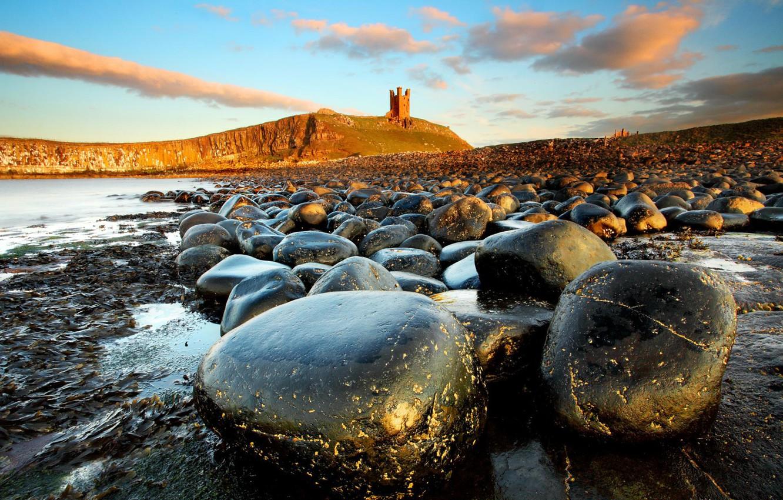 Photo wallpaper sea, landscape, stones, castle, Northumberland, Dunstan Burgh
