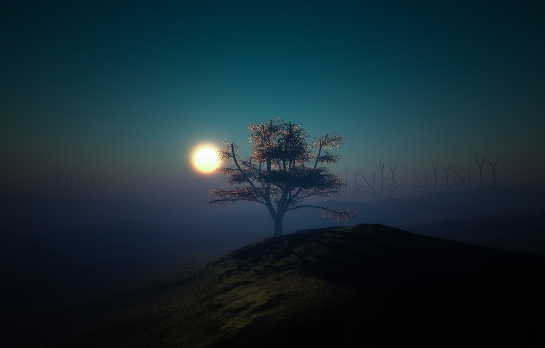 Photo wallpaper light, night, tree, the moon, minimalism, hill