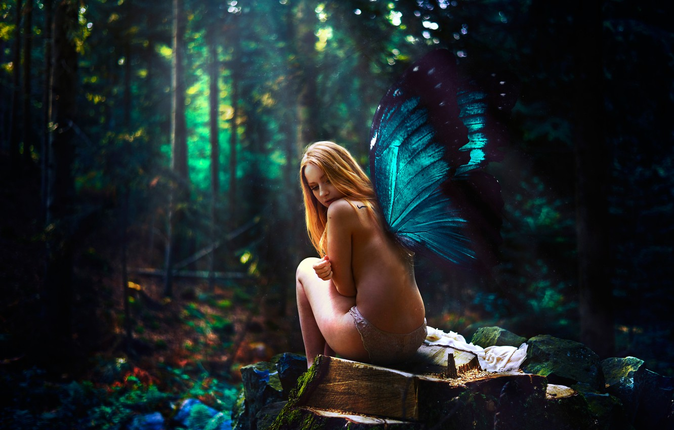 Photo wallpaper forest, girl, butterfly, wings, Samantha Meglioli