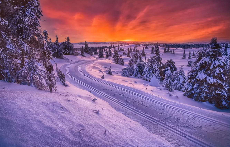 Photo wallpaper winter, road, Norway, sledding