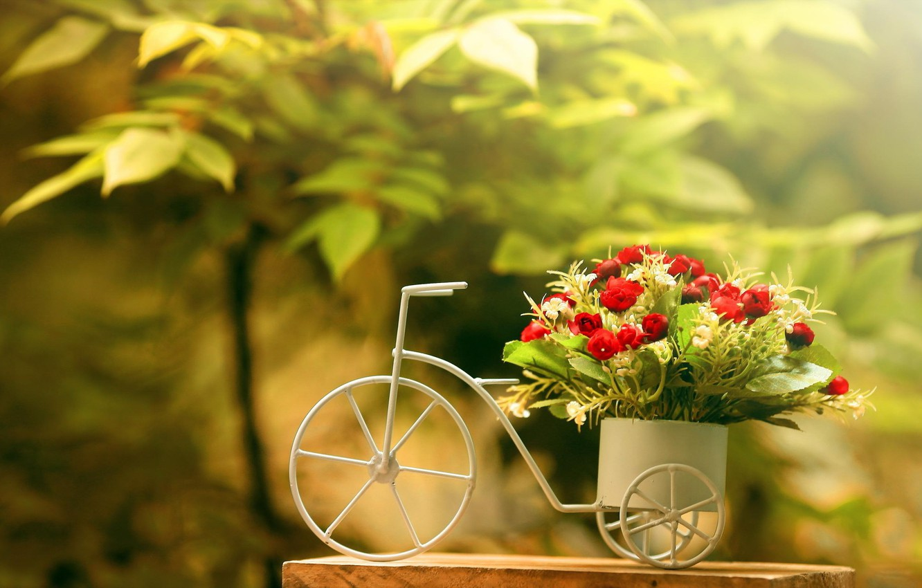 Photo wallpaper greens, flowers, bike, foliage, bouquet, red