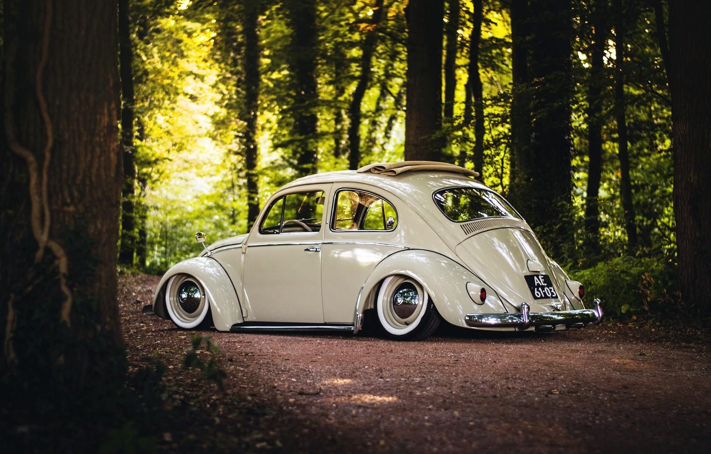 Photo wallpaper Volkswagen, wheels, sunshine, forest, road, trees, rear, Beetle, sunroof