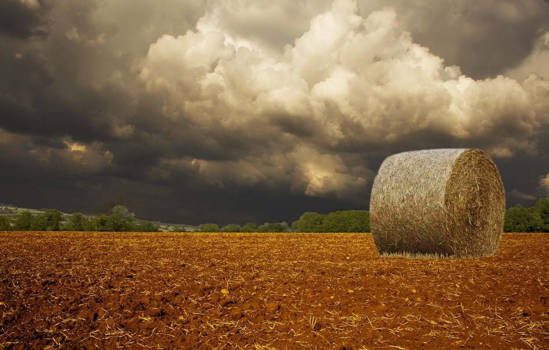 Photo wallpaper field, clouds, storm
