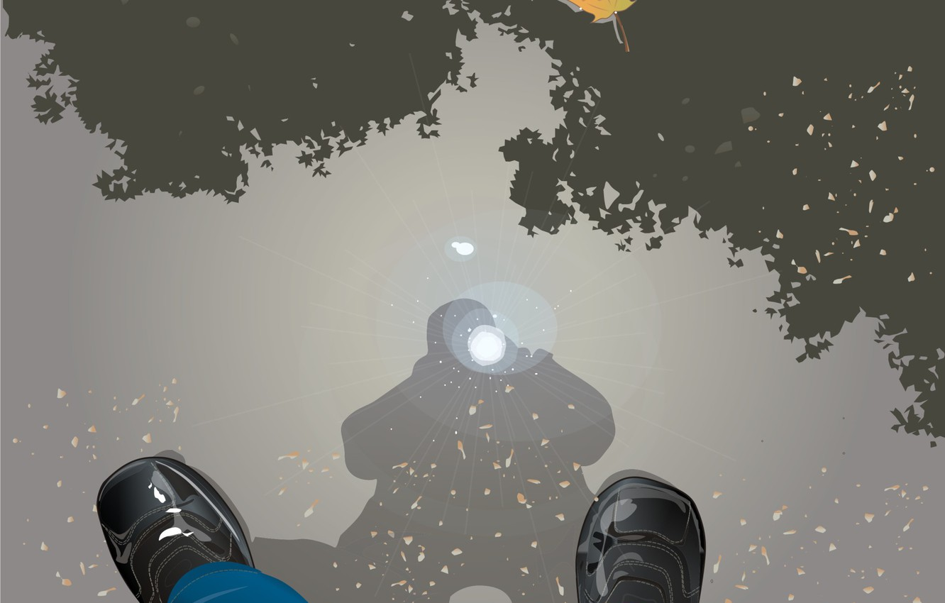 Photo wallpaper autumn, reflection, vector, puddle