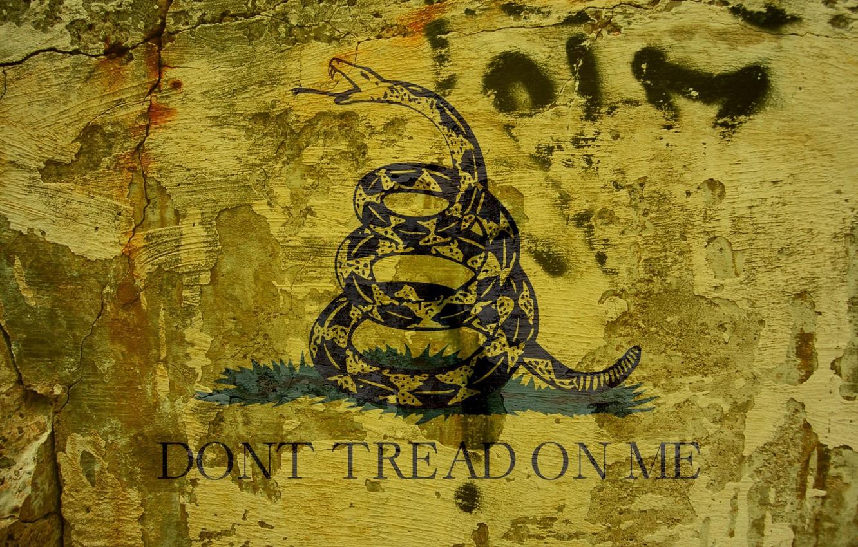 Wallpaper Snake Metallica Don T Tread On Me Images For Desktop