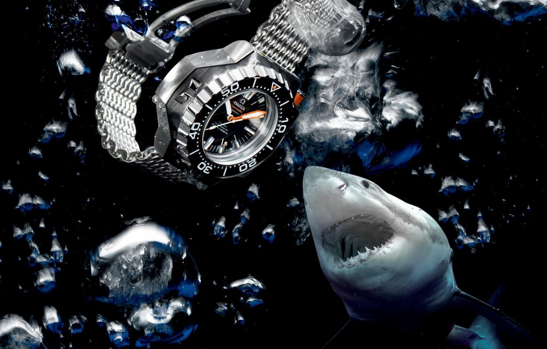 Photo wallpaper water, shark, Watch, Omega, Seamaster, 1200M, Ploprof