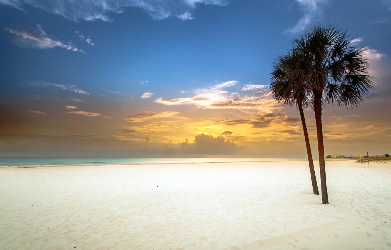 Photo wallpaper sand, white, beach, sunset, palm trees, Bay