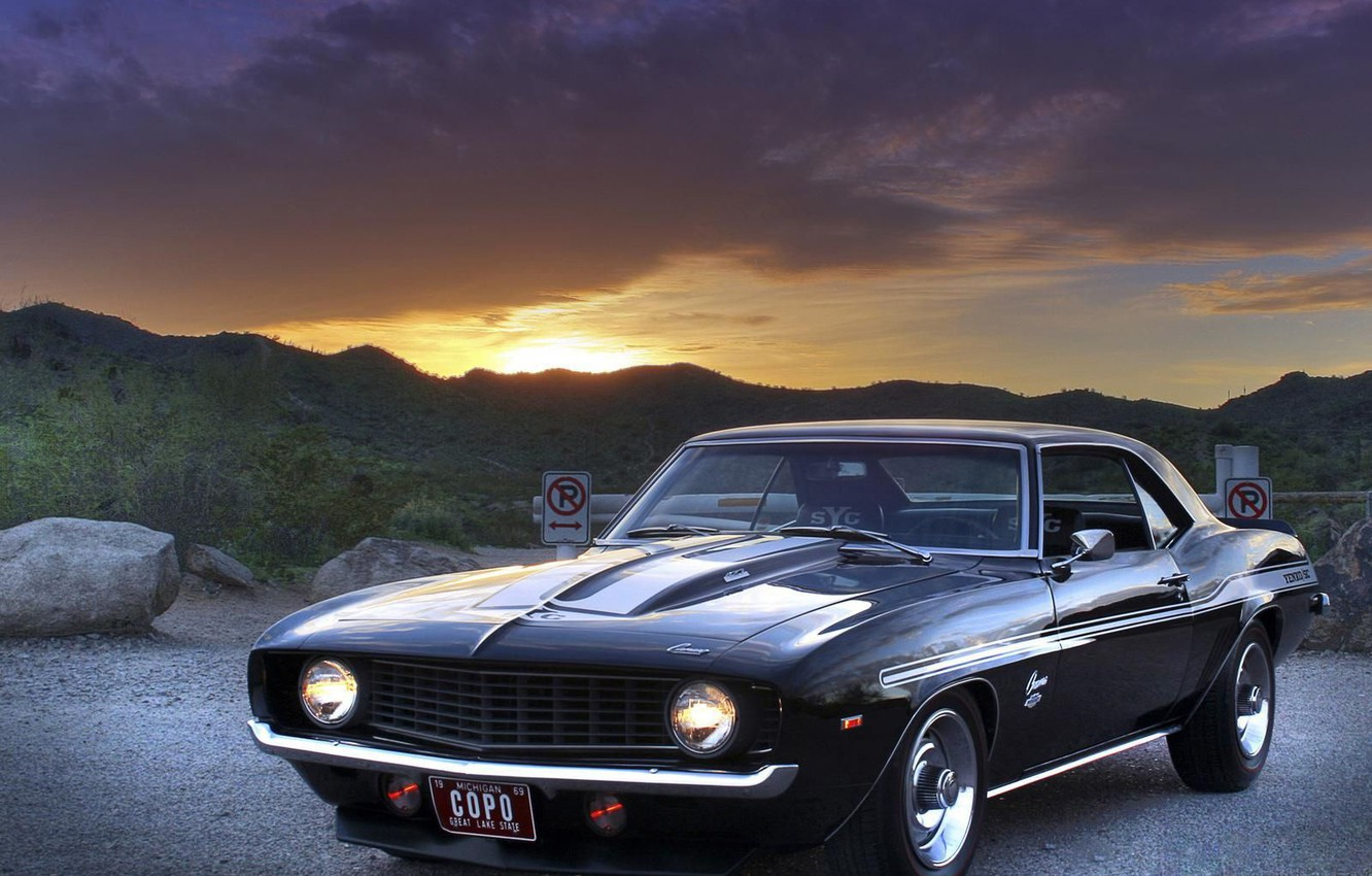 Photo wallpaper The sky, Black, Muscle